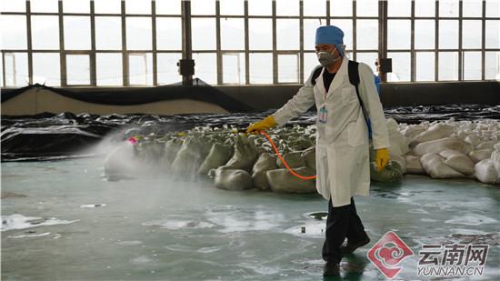 云南建水网格化防控推动企业有序